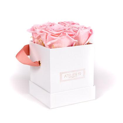 4 Roses Eternelles Rose Tendre - Box carrée Blanche