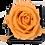 Thumbnail: 1 Rose Eternelle Pêche Velouté - Box carrée Noire