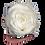Thumbnail: 1 Rose Eternelle Blanc Pur - Box carrée Blanche