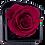 Thumbnail: 1 Rose Eternelle Carmin Intense - Box carrée Noire