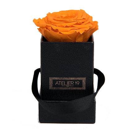 1 Rose Eternelle Orange Vibrant - Box carrée Noire