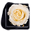Thumbnail: 1 Eternal Rose - Champagne - Black square Box