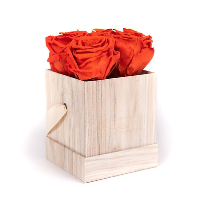 4 Eternal Roses - Vibrant Orange - Light Wood square Box