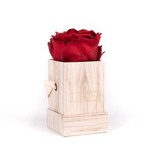 1 Eternal Rose - Intense Carmine - Light Wood square Box