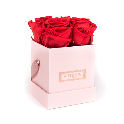 4 Eternal Roses - Passion Red - Powder Pink square Box