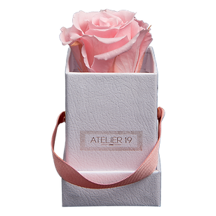 1 Eternal Rose - Soft Pink - White square Box