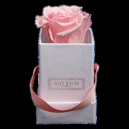 1 Rose Eternelle Rose Tendre - Box carrée Blanche