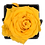 Thumbnail: 1 Eternal Rose - Golden Yellow - Black square Box