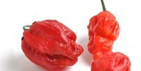Peppers (Habanero, Red)