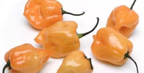 Peppers (Habanero, Orange)