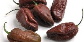 Peppers (Bhut Jolokia, Chocolate)