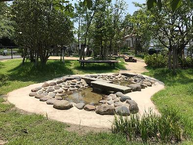 池の写真.JPG