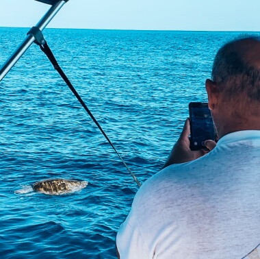 turtle-watching-tour-in-playa-garza-nosara-costa-rica-viberts-secret-spot