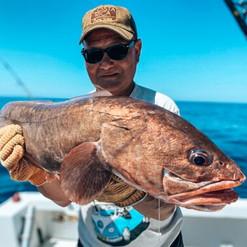 catching-congrio-on-a-fishing-trip-in-playa-garza-nosara-costa-rica-viberts-secret-spot