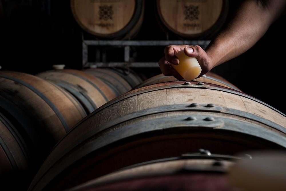חבית יין ביקב רקנאטי - A barrel of wine at Recanati Winery. Cave Recanati