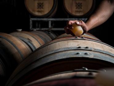 About the Recanati Winery