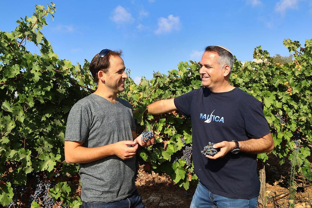 Eliav Miller and Dr. Shivi Dror- דוד סילברמן Kosher Winery