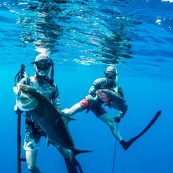 spearfishing-amberjack-in-playa-garza-nosara-costa-rica-viberts-secret-spot