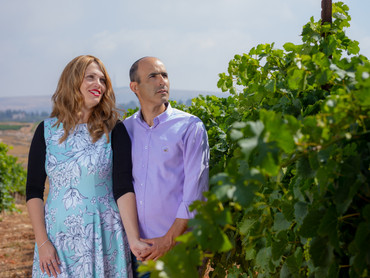 About the Tura Winery
