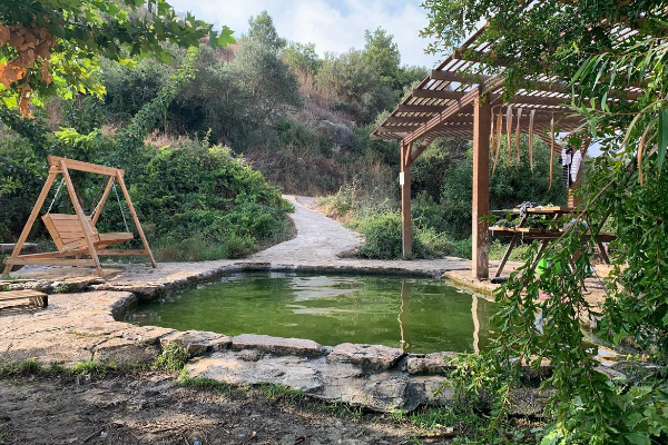 The Einot Aner pool with a wood swing, bench, and pergola around the edge