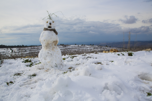 A snowman wearing a scarf created after a snowstorm in the Israeli desert
