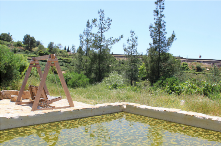 The pool at Ein Rosh Tzurim and wooden swing at the edge