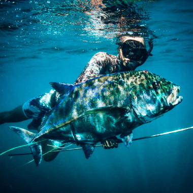 spearfishing-jack-in-playa-garza-nosara-costa-rica-viberts-secret-spot