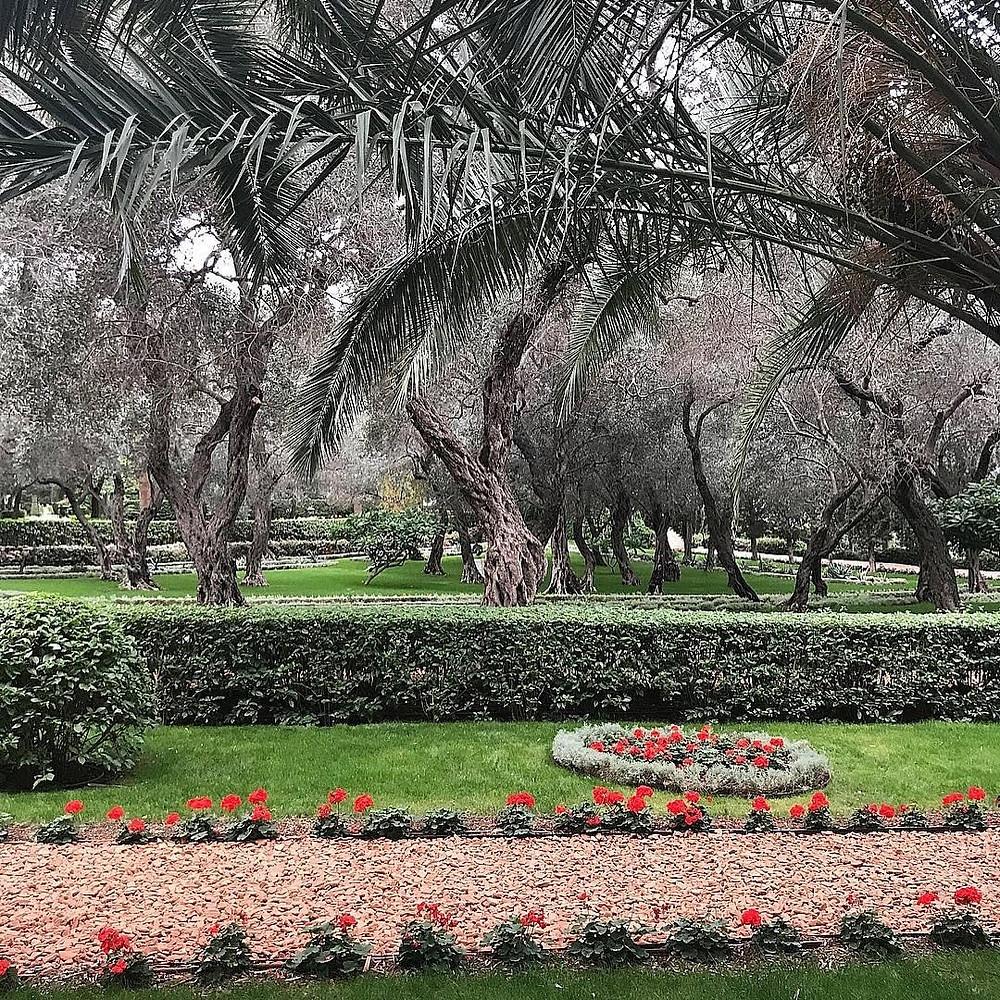 A Baha'i Garden path in Haifa