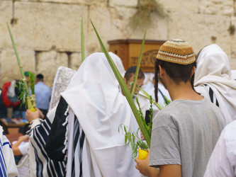 All About the Sukkah