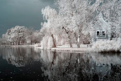 How To Create The 'WOW' Factor In Your Photos And Videos With Infrared Photography