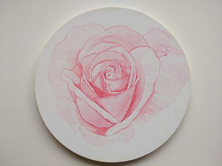 Its a rose.jpg