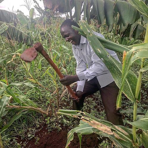 Sponsor a Boon Farmer (3 Years)