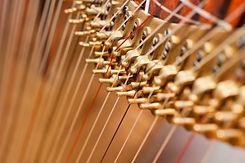 Fragment pins Harp.jpg