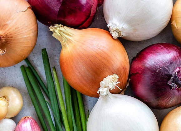 Onions Cooking Class - 9/23/20