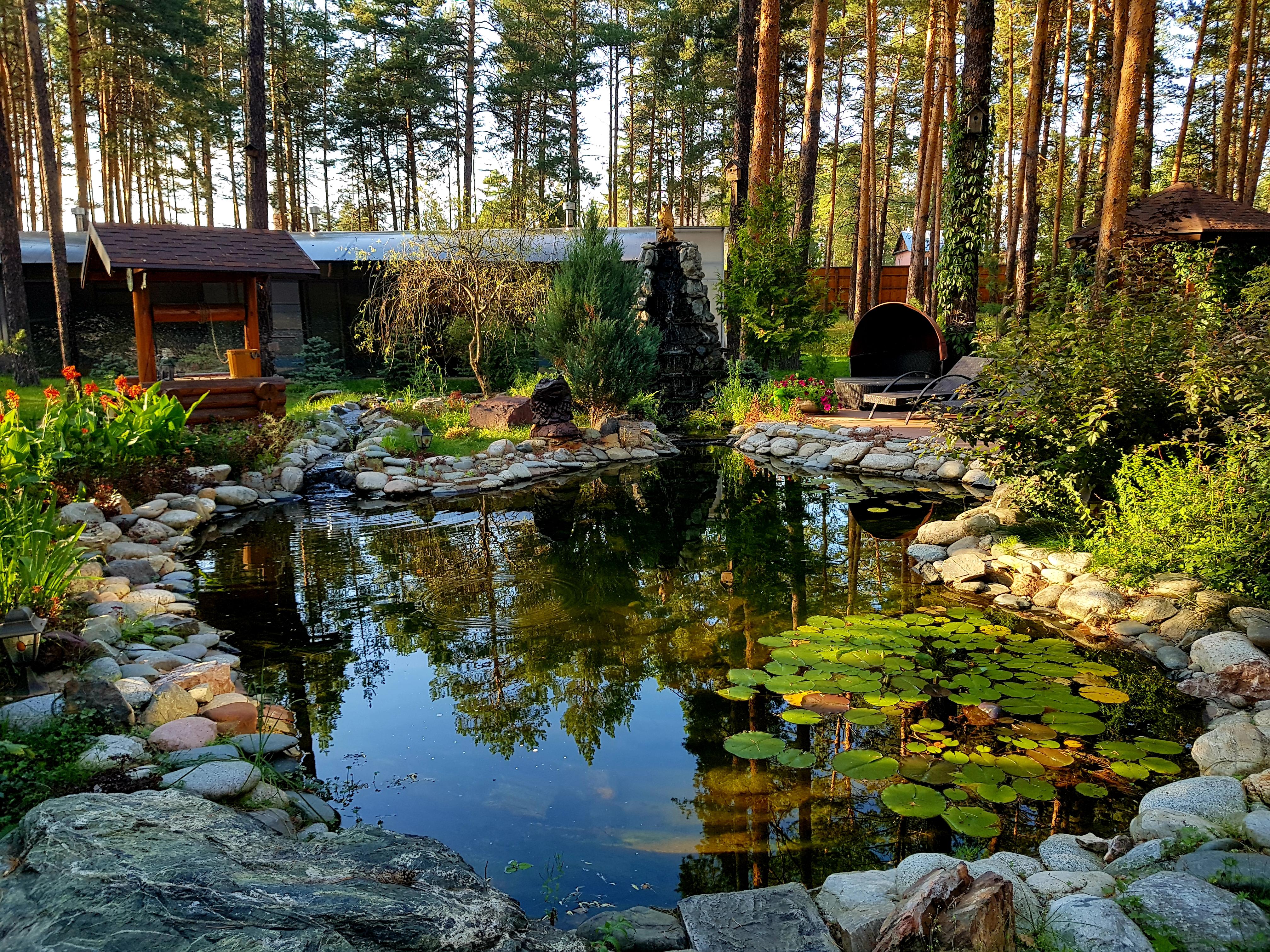 Кленовая гора Озеро