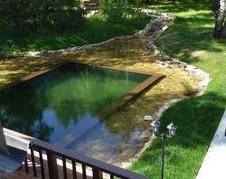 купальный пруд Вишневка