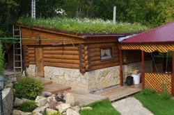 газон на крыше