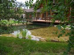 вишневка купальный пруд