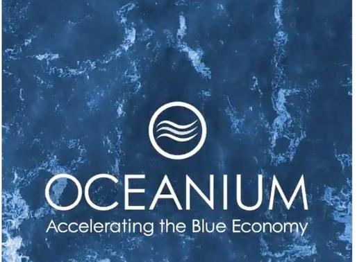 Sky Ocean Ventures invests in Oceanium.