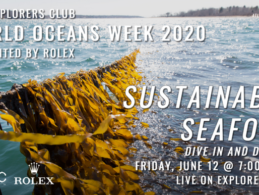 The Explorers Club x Oceanium: World Ocean Week 2020