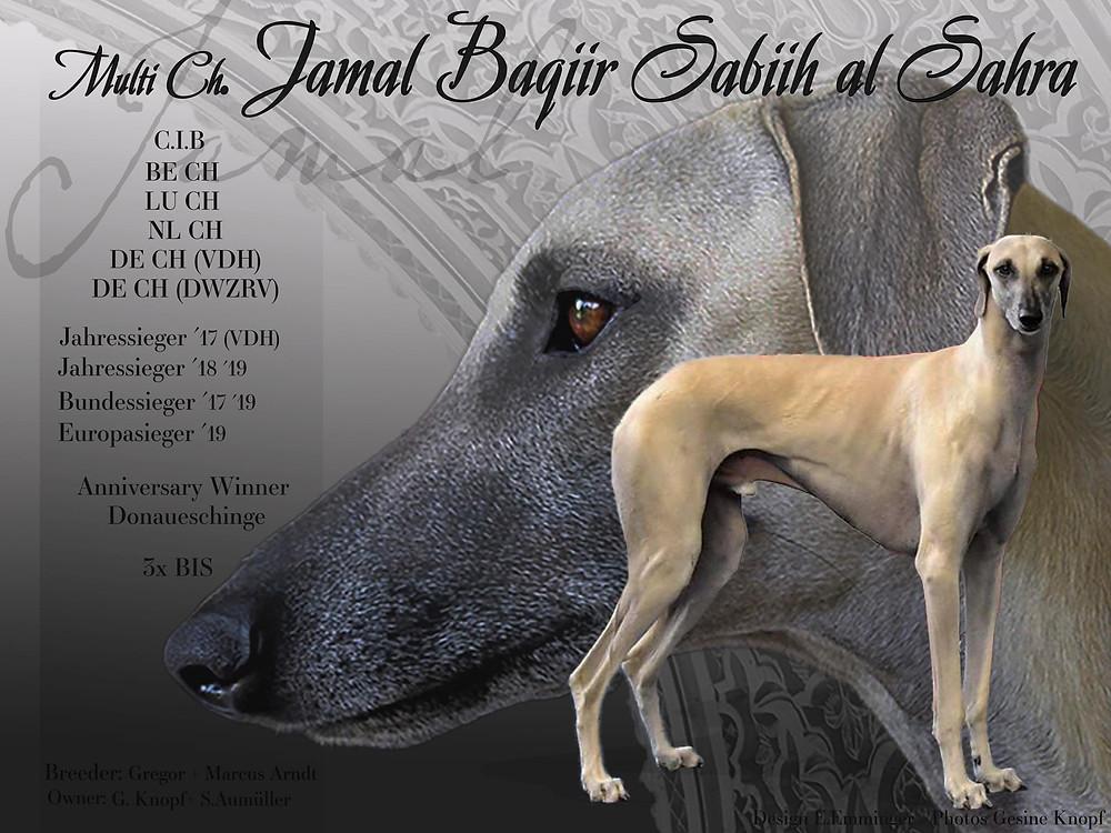 Jamal Baqiir Sabiih al Sahra
