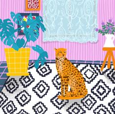 Living room wild cat