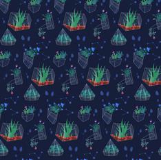 Glass house constellation