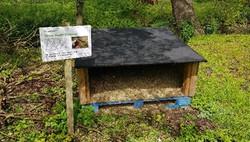 Biodiversity at Green Park