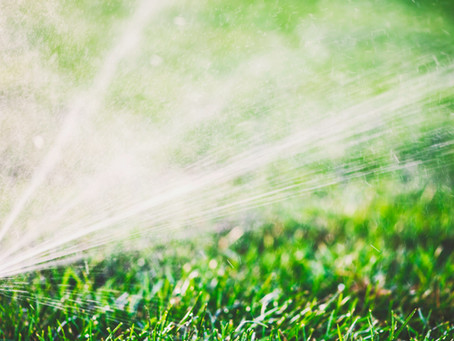 How to Detect Sprinkler Leaks