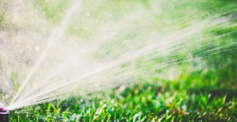 Eco-Friendly Benefits of Seawater Irrigation