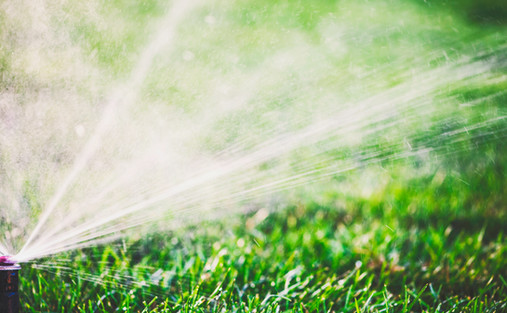 Irrigation & Drainage by Red Valley Landscape & Construction in Lake Travis Texas