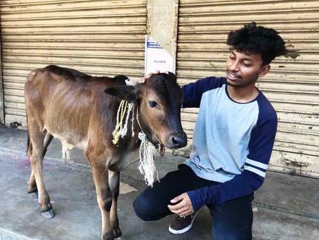 Meet Supriyo,  an Animal Lover