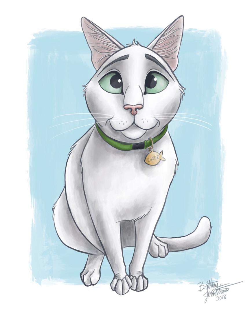 Charlie Kitty Portrait_Sarah.JPG