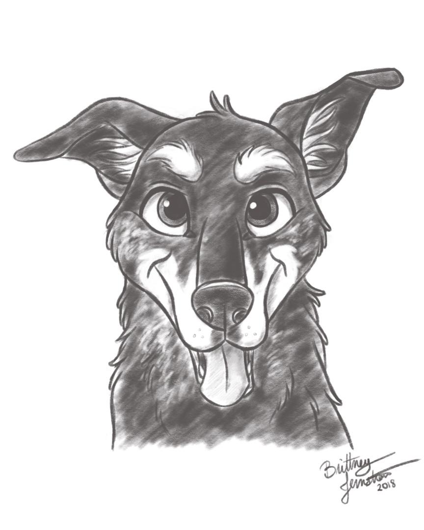 Maggie - Pup Sketch Portrait.jpg